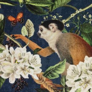 Panama, Flora und Fauna, Dunkelblau, Brauntöne, Offwhite