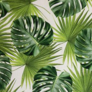 Panama, Blätter, Grautöne, Offwhite