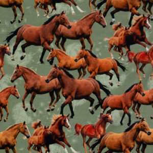 Jersey, Pferdeherde, Pusteblume, Brauntöne, Schilf