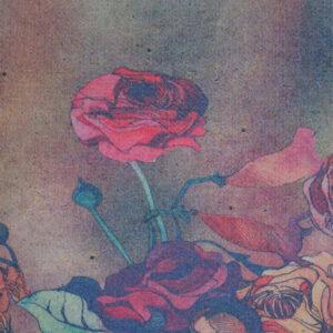 Doubleface, Farbverlauf, Blütenbordüre, Beerentöne, Hellgrau, Blau