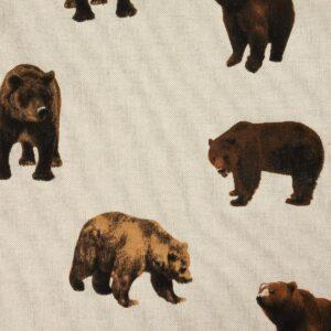 Panama, Bären, Natur, Brauntöne