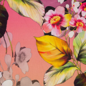 Viskosejersey, Blüten, Farbverlauf, Pink, Beerentöne, Apricot