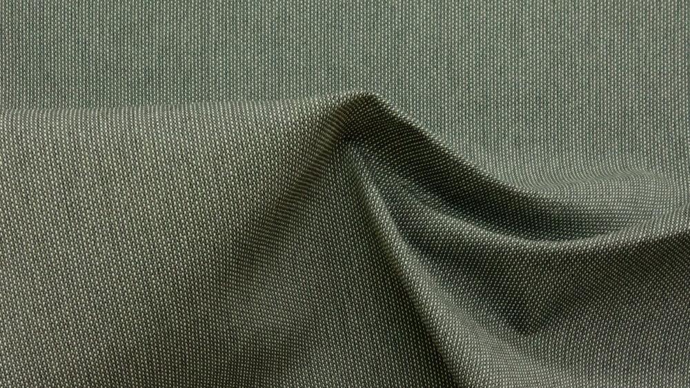 bicolor, Graugrün, Lichtgrau