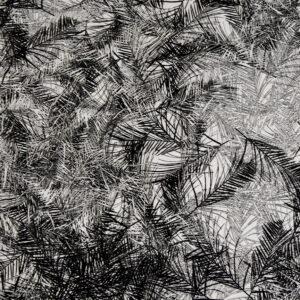 Baumwollsatin, Palmblätter, Schwarz, Offwhite