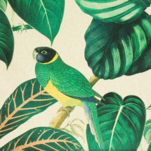 Panama, Flora und Fauna, Grüntöne, Gelb, Natur