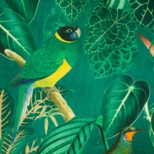 Panama, Flora und Fauna, Grüntöne, Orange, Gelb