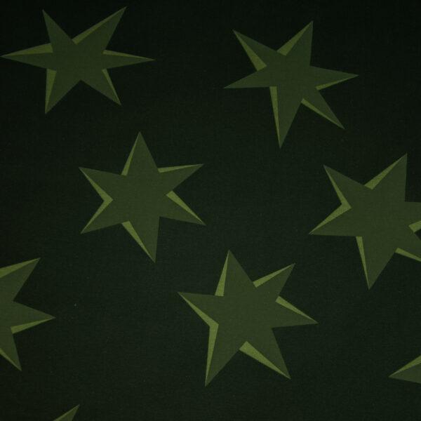 Sommersweat, Sterne, Grüntöne